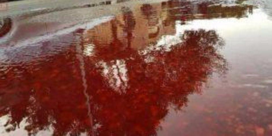 """دماء مجهولة تظهر  بساحة جامعة عين شمس.. والفلكي أحمد شاهين: ساكشف سرها لاحقا """" صور """""""