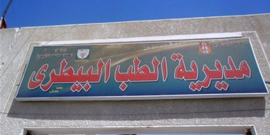 طب بيطري القاهرة تضبط مواشي مصابة بالحمى القلاعية بالبساتين