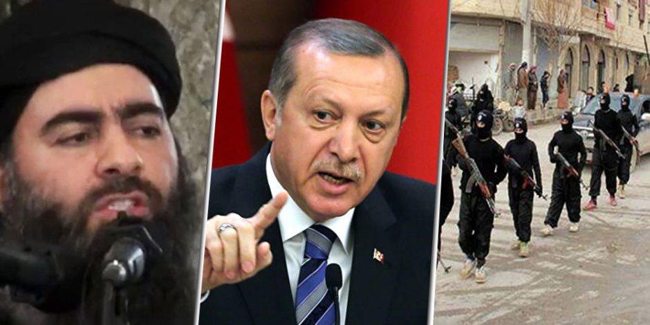 أردوغان يحرق أغصان الزيتون.. جرائم حرب السلطان العثماني في عفرين