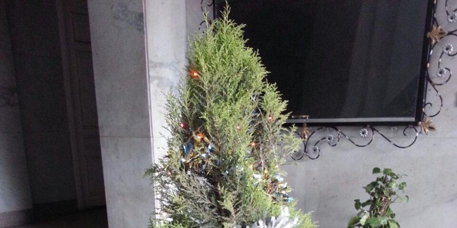 شجرة ولافتة.. محافظة القاهرة تحتفل بعيد الميلاد المجيد على طريقتها الخاصة (صور)