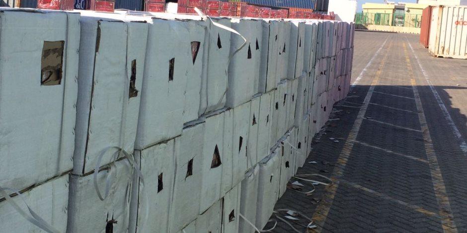 تفاصيل إحباط تهريب 12.5 مليون قرص مخدر عبر قناة السويس