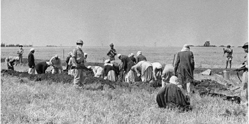 في ذكرى مذبحة حيفا.. 10 معلومات عن عصابات الهاجاناه