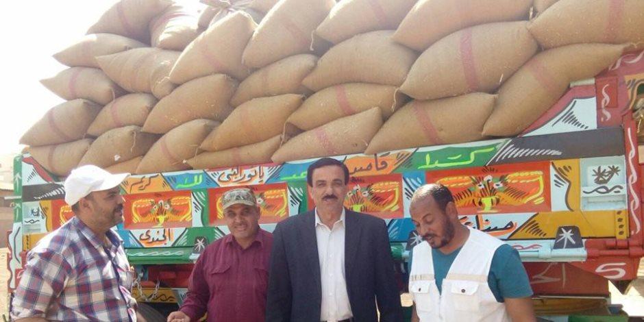 """حصاد 85 فدان وتوريد 33 الف 739 طن للشون من محصول القمح بالدقهلية """"بالصور"""""""