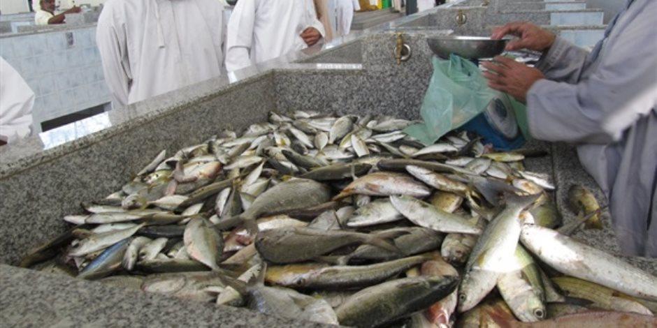 «شركة تسويق الأسماك»: 25 % خصومات على الأسعار عن السوق الحرة