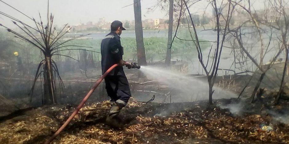 السيطرة على حريق بمزرعة قمح بالفيوم