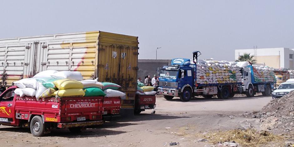144 ألف و160 طنًا.. إجمالي توريد محصول القمح بشون وصوامع الدقهلية حتى اليوم