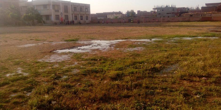 مركز شباب محمد صلاح يبكي الإهمال.. الحيوانات الضالة تحتفي بنجم ليفربول (صور)