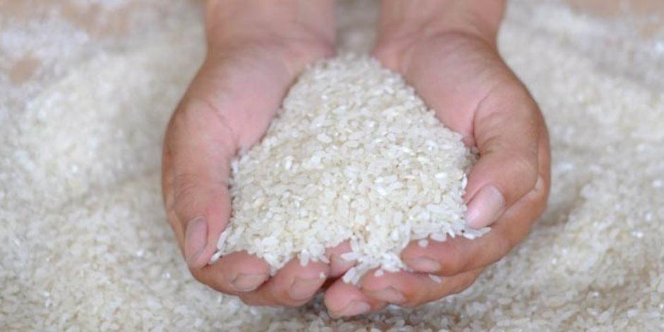 شعبة الأرز: المصريون خزنوا مليون و250 ألف طن بعد تصريحات تقليص المساحات