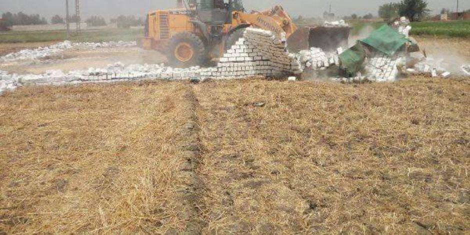 إزالة 17 حالة تعدى على الأراضى الزراعية ورفع 1347 إشغال طريق بالشرقية (صور)