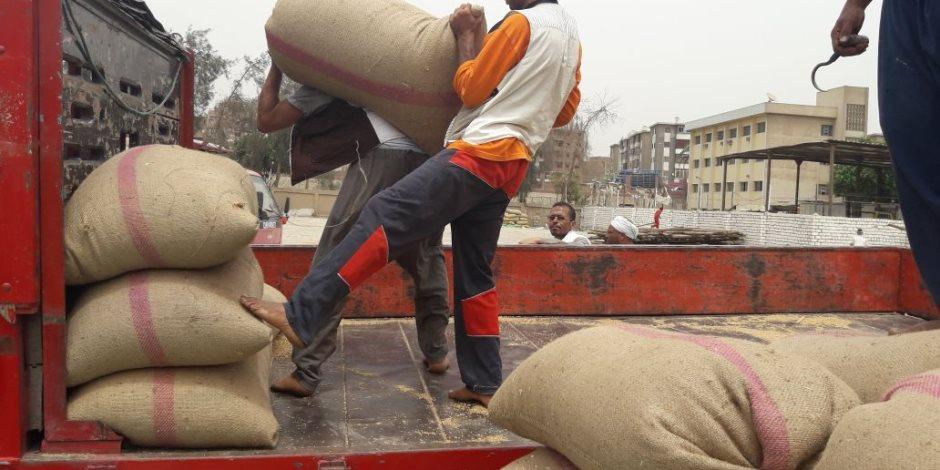 «زراعة أسيوط»: توريد 84 ألف طن قمح للشون والصوامع.. وحصاد 199 ألف فدان