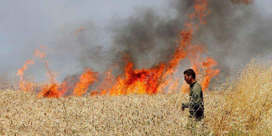 فلسطين عضو بـ«منظمة حظر الأسلحة الكيماوية».. هل القرار تمهيد لفضح انتهاكات إسرائيل؟
