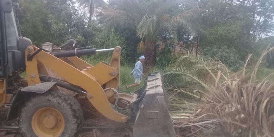 «رماها الهوا».. سقوط شجرتي نخيل على شريط السكة الحديد والزراعي بسوهاج (صور)
