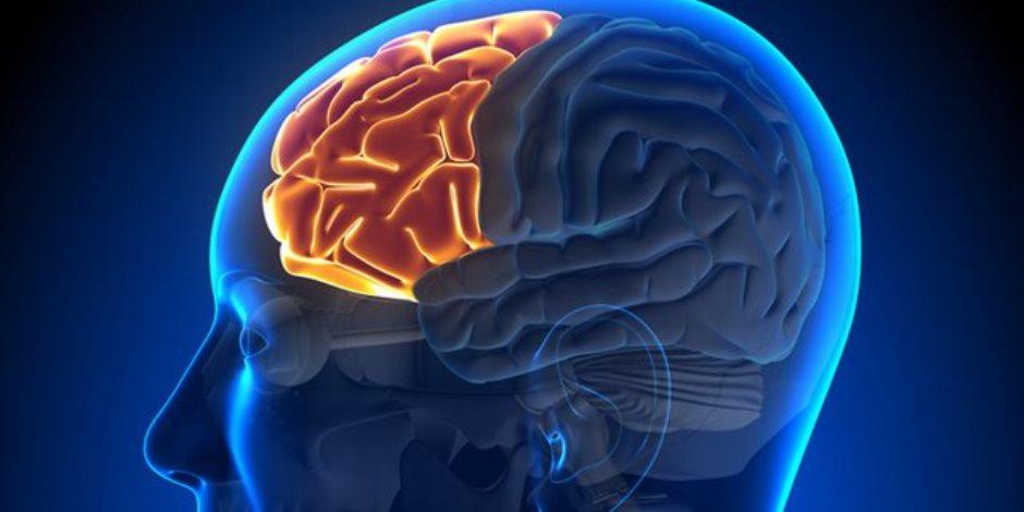 تعرف على وظائف العصب الثلاثي التوائم