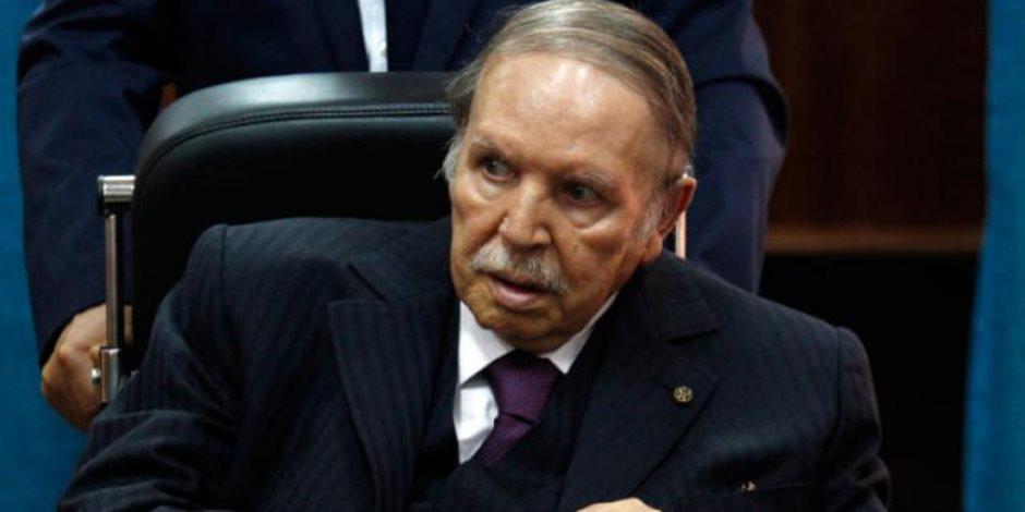 عدد قياسي.. 186 مرشحا لانتخابات الرئاسة في الجزائر حتى الآن