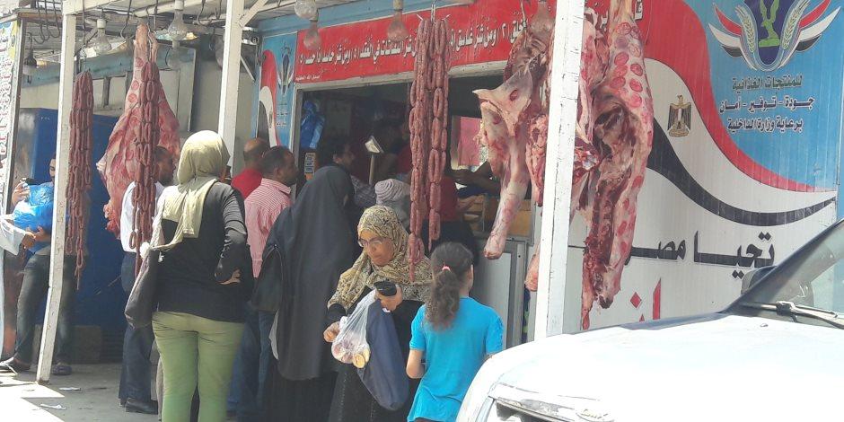 حرب ضارية ضد الغلاء في الإسكندرية.. المحافظة تفاجئ المواطنين بأسعار اللحوم