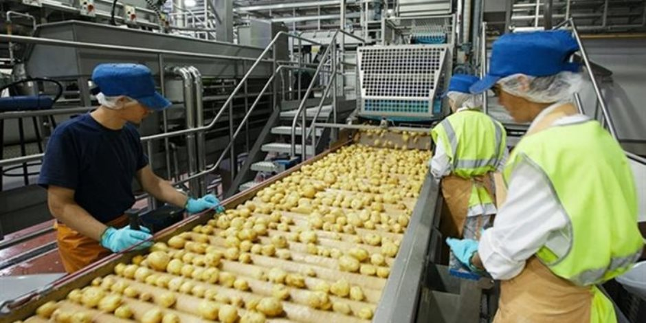 من يناير 2018 إلى مايو الماضي.. 7 نقاط ترصد نمو صادرات الصناعات الغذائية