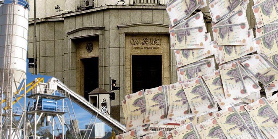 محفظة ضخمة وفائدة ضاغطة.. هل تدعم البنوك التنمية أم تمتص السيولة من السوق؟