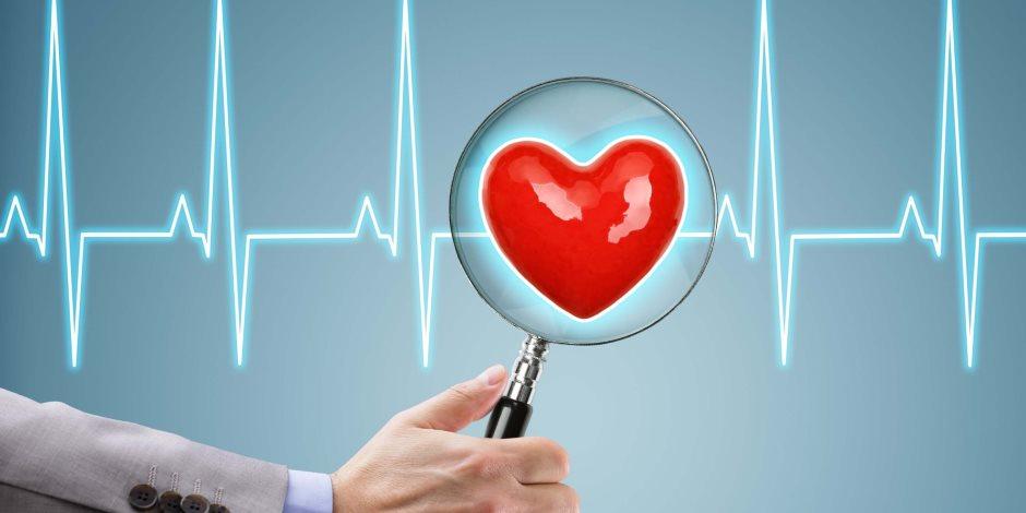 «قلوب الأحبة تنبض مثل بعضها».. أبرز الحقائق عن قلب الإنسان وموعد النبضة الأولى
