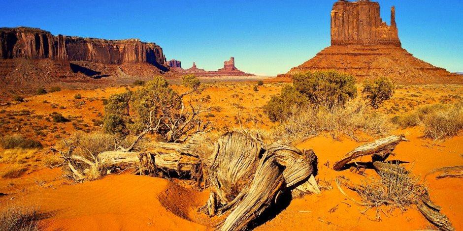 """طريق الحجاج والمسيحيين طوال قرون.. حكاية """"درب سيناء"""" وسمعته المبهرة عالميا"""