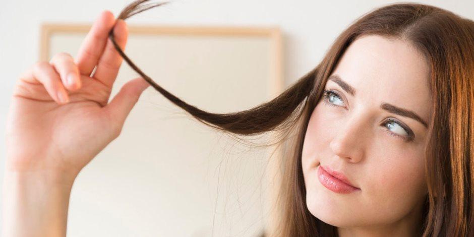 التهاب وحكة.. ازاى تعالجي قشرة الشعر بطرق طبيعية