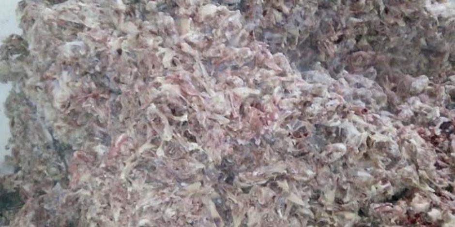 حملات الـ«24 ساعة» تحمي بطون الأهالي من اللحوم الفاسدة في عيد الأضحى (صور)