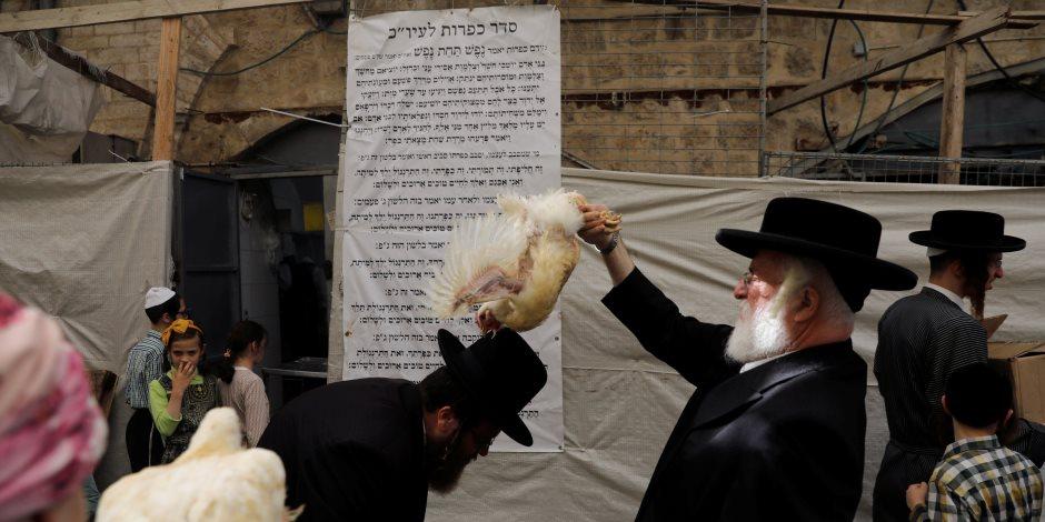 """استعدادا ليوم الغفران.. كيف يمحي الدجاج ذنوب """"اليهود المتشددين"""" (صو)"""