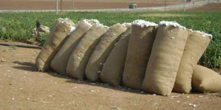 """فى أزمة توريد القطن.. المزارعون يصرخون: """"بيع المندرة ليس غندرة"""""""