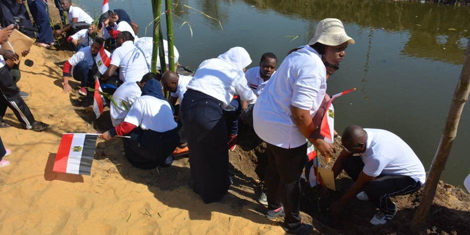 التشجير من أجل النيل.. «البامبو» كلمة السر في الحد من التلوث البيئي (صور)