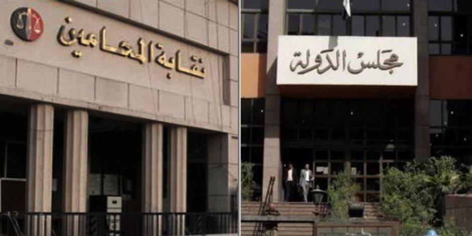 أحدهما يعصف بـ«مواردها».. مبدآن حديثان لـ«الإدارية العليا» بشأن نقابة المحامين (مستند)