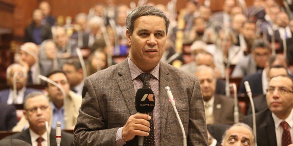ممثل الأزهر للبرلمان: الدستور ليس آيات منزلة مقررة من السماء