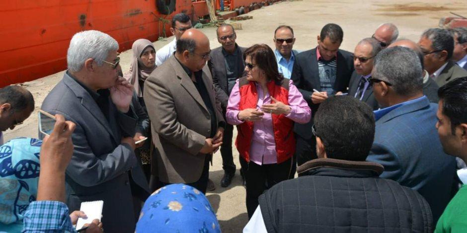 نائب وزير الزراعة تتفقد مشروعات بطنوب سيناء وتفتتح المعرض الزراعي بالطور (صور)