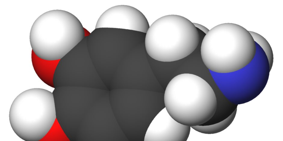 كيف يتحكم «الدوبامين» في سعادتك؟ فيديو معلوماتي يجيب