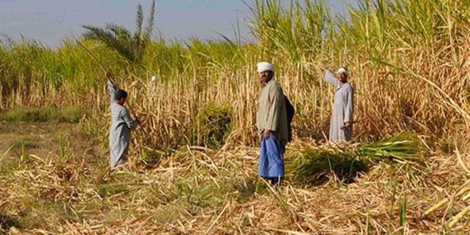 ينتظره 9 مليون فلاح.. المؤتمر القومى لدعم صغار المزارعين يبحث دعم تطوير القدرات التسويقية