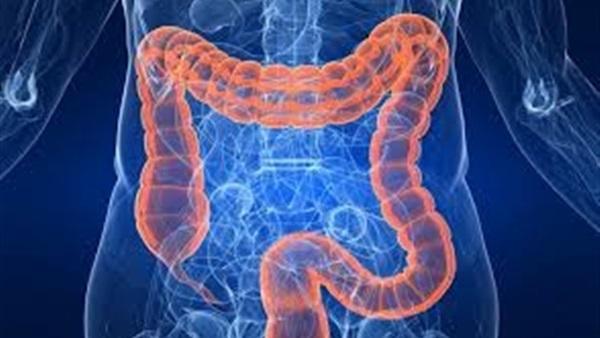 علاج قرحة المعدة والقولون بالطب البديل