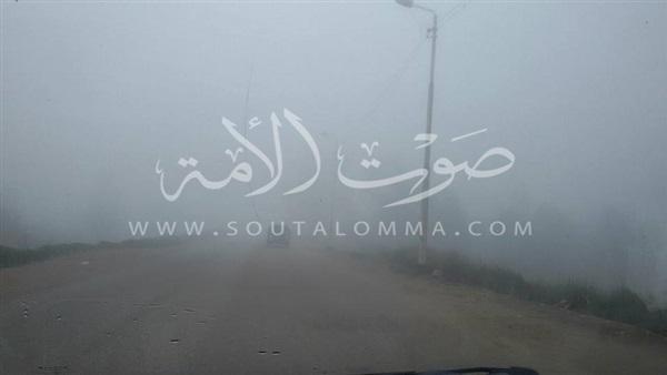 طوارئ في كفر الشيخ بسبب الشبورة المائية (صور)