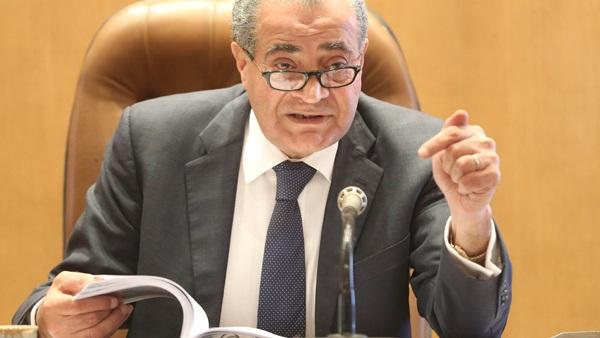 «المصلحي».. رحلة برلمان انتهت في وزارة