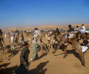 بعد دحر الإرهاب.. مراسلو الوكالات الأجنبية في شمال سيناء لرصد الحياة على طبيعتها