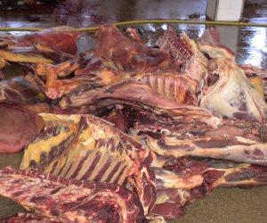 ضبط لانشون ولحوم غير صالحة للإستخدام الأدمى في ٩ حملات بالأسكندرية