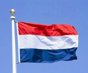 متطرفون يهاجمون مسجدا في هولندا بدم الخنزير