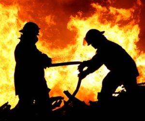 نفوق 8 رؤوس ماشية في حريق بالوادي الجديد