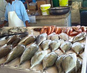 أسعار السمك اليوم السبت 20-7-2019.. البلطي ينخفض لـ 32 جنيها للكيلو