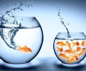 7 تحديات تواجه الأشخاص الناجحين التي لا تمثل عقبات لهم.. تعرف عليهم