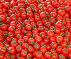 5 أطعمة تحافظ على الشرايين وتمنع الإصابة بأمراض القلب.. الطماطم والزنجبيل الأهم