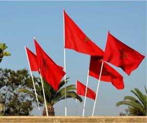 العلاقات المصرية المغربية.. 900 مليون دولار حجم التبادل التجاري بين البلدين