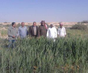 «اليماني» يبحث مطالب الأهالي  خلال زيارته لتجمعات «نخل» بوسط سيناء
