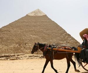 ٥٠  ألف زائر احتفلوا بعيد الأضحى بالأهرامات.. منهم ١١ ألف اليوم