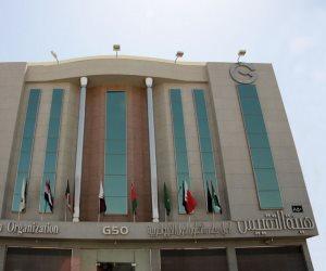 «خليجيون في حب مصر».. أول كيان مؤسسي لتعزيز العلاقات المصرية الخليجية