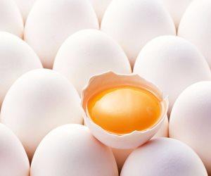 شعبة الدواجن تتهم التجار برفع أسعار البيض بشكل جنوني والأسعار الحالية غير مبررة