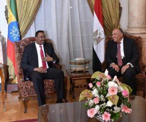 وزير خارجية إثيوبيا بجوار نظيره المصري في قصر التحرير (صور)
