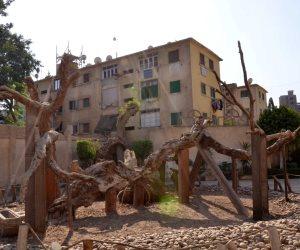 """استمرار أعمال تطوير """"شجرة مريم"""" ومحيطها بالمطرية"""